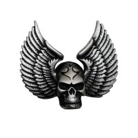 Wings Skull Pin