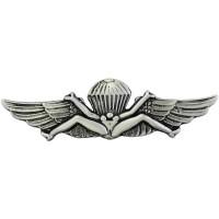 Para US Navy Pin