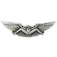 US Aviator Pin